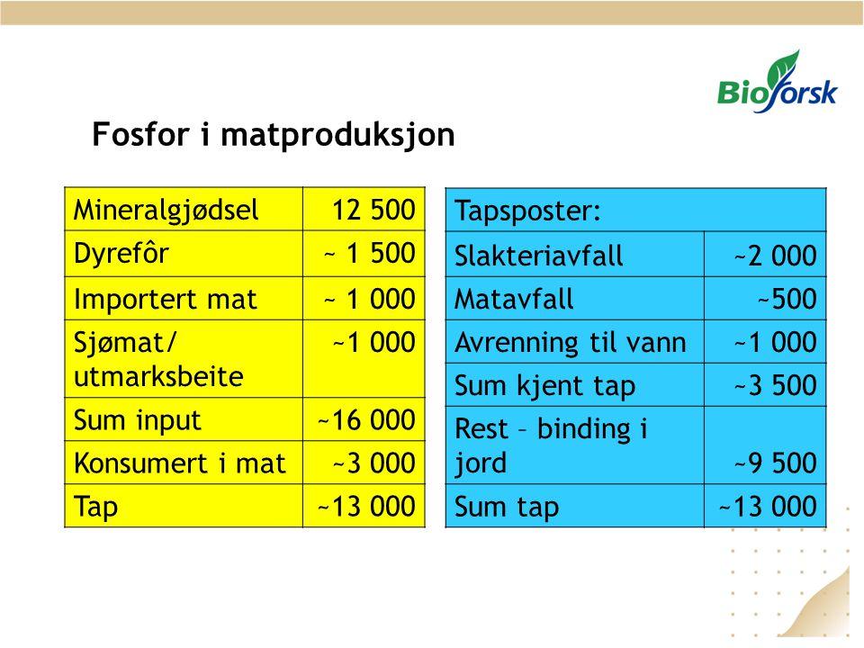 Fosfor i matproduksjon