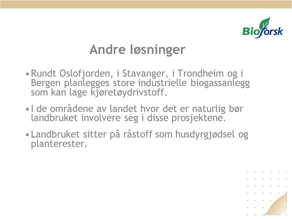 Andre løsninger Rundt Oslofjorden, i Stavanger, i Trondheim og i Bergen planlegges store industrielle biogassanlegg som kan lage kjøretøydrivstoff.