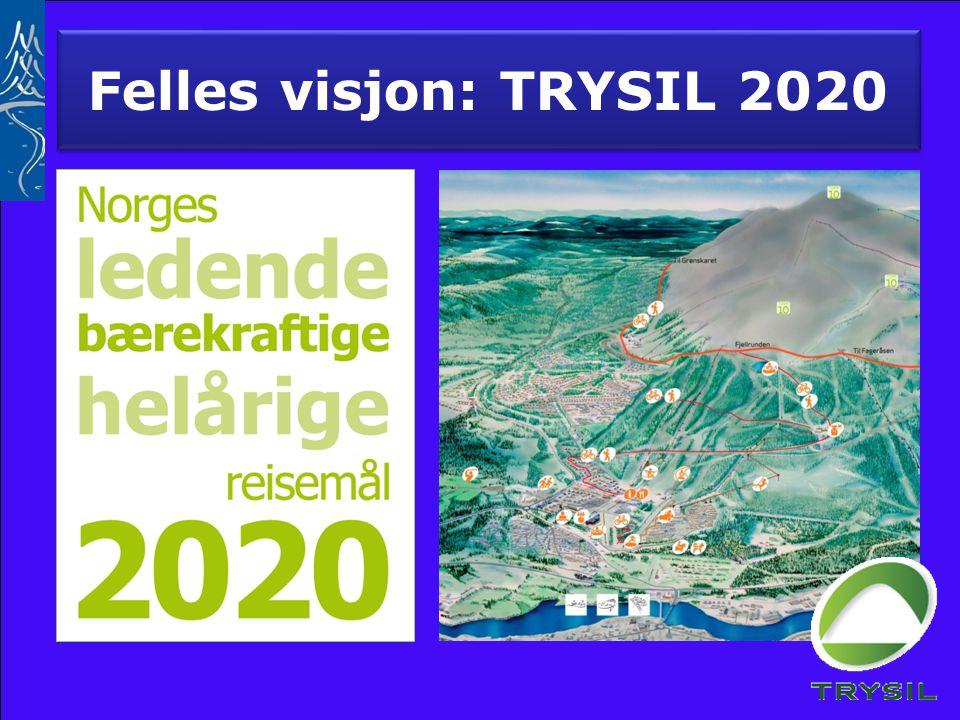 Felles visjon: TRYSIL 2020
