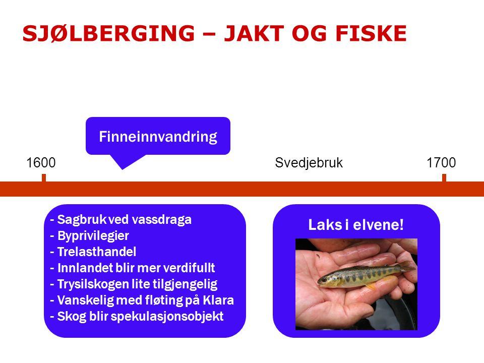 SJØLBERGING – JAKT OG FISKE