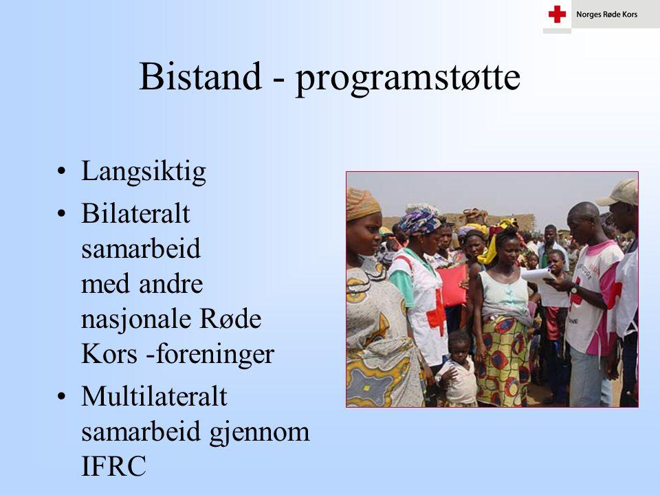 Bistand - programstøtte