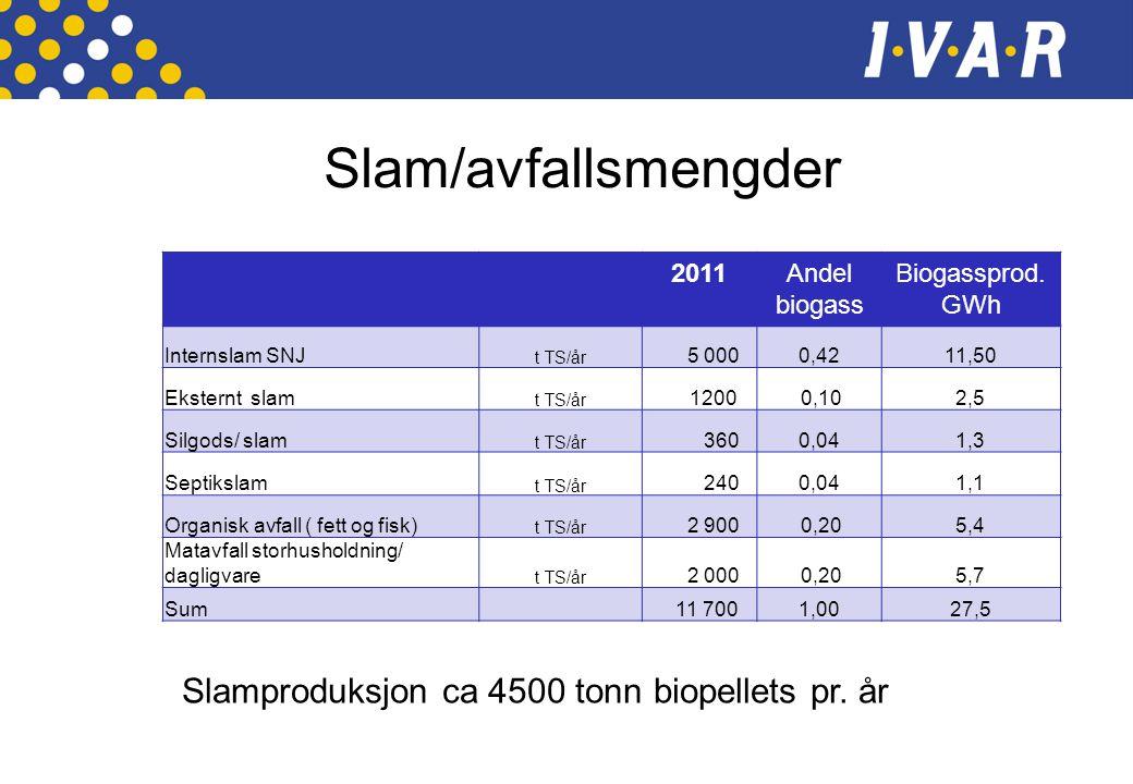 Slam/avfallsmengder Slamproduksjon ca 4500 tonn biopellets pr. år 2011
