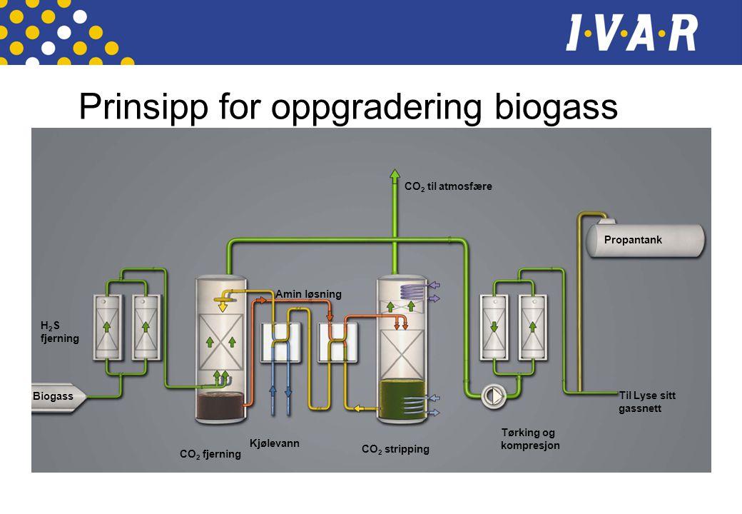 Prinsipp for oppgradering biogass