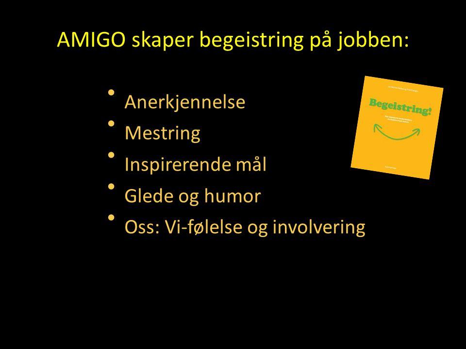 AMIGO skaper begeistring på jobben: