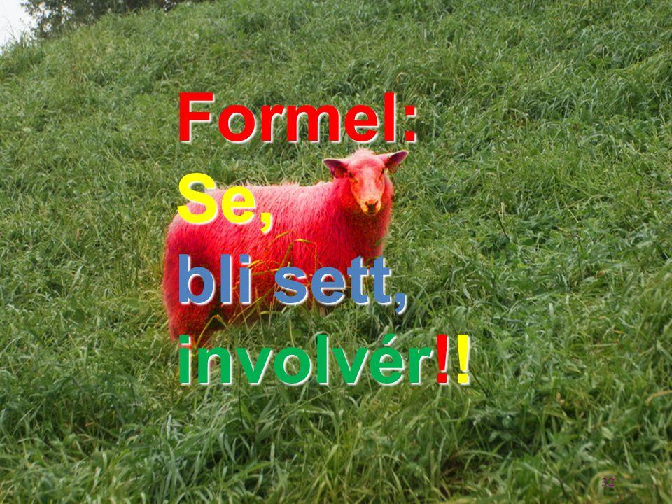 Formel: Se, bli sett, involvér!! 32 32