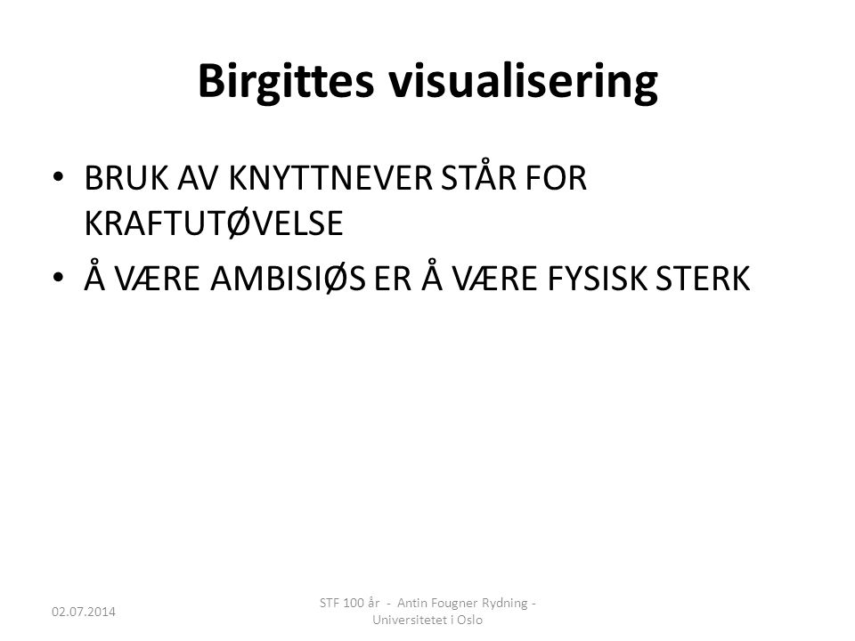 Birgittes visualisering