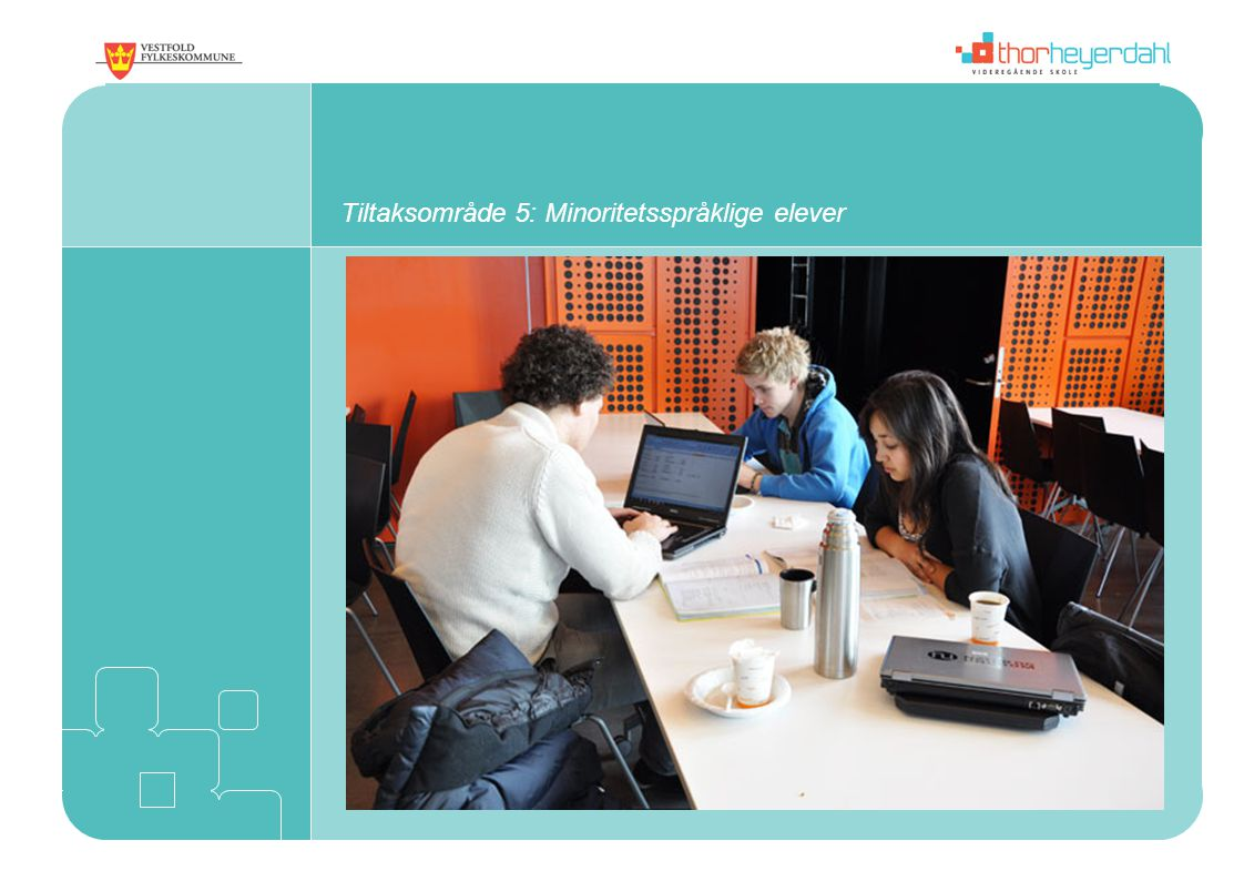 Tiltaksområde 5: Minoritetsspråklige elever