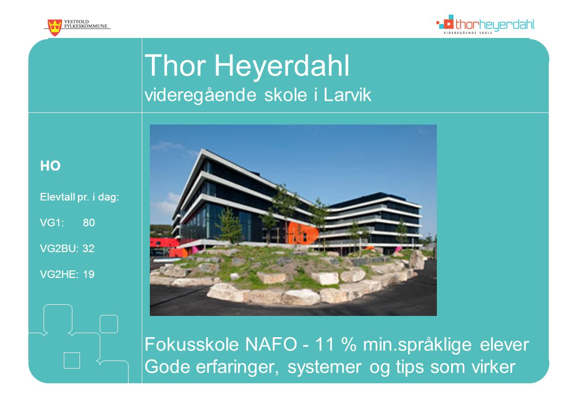 Thor Heyerdahl videregående skole i Larvik Fokusskole NAFO - 11 % min