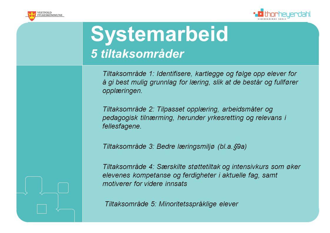 Systemarbeid 5 tiltaksområder