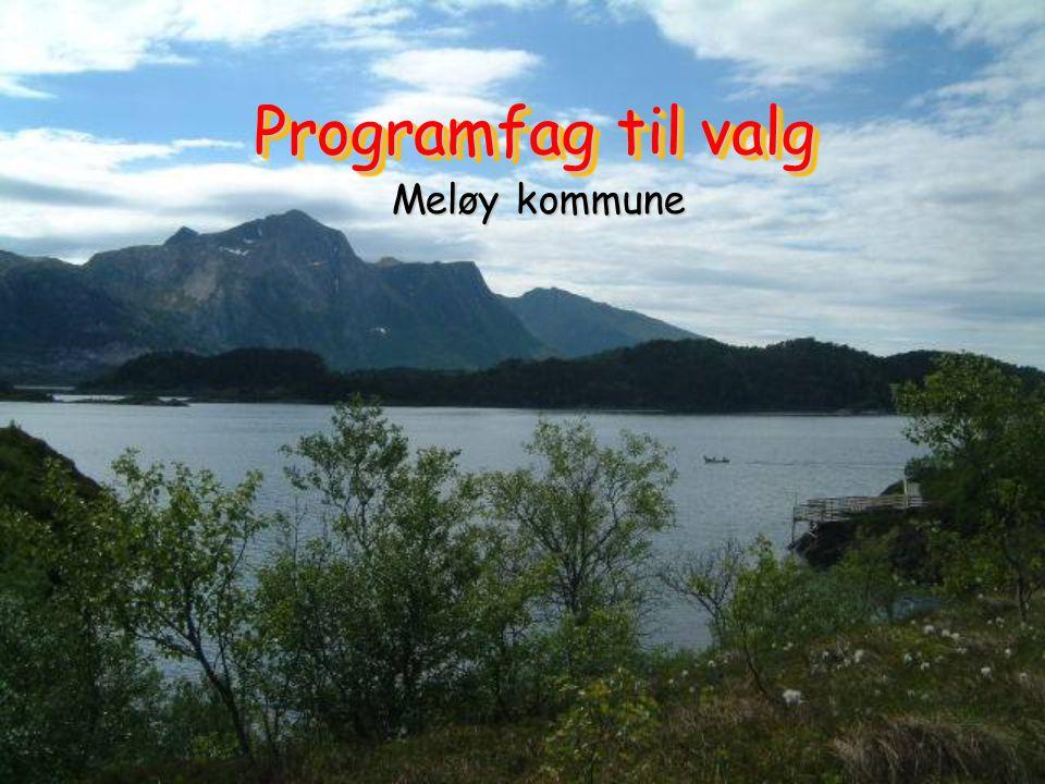 Programfag til valg Meløy kommune