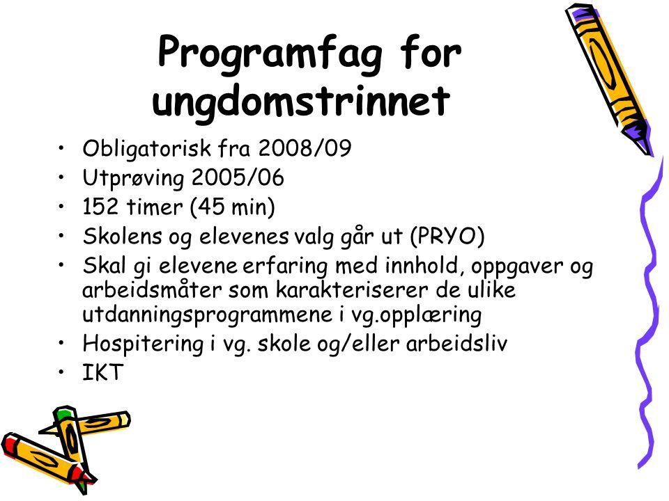 Programfag for ungdomstrinnet