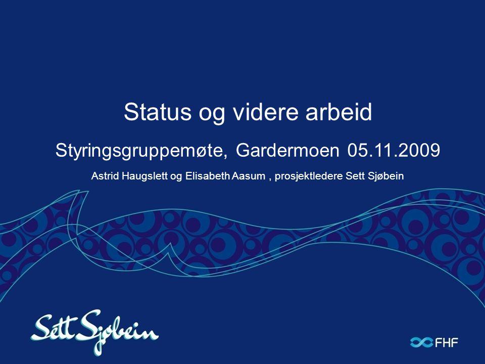 Status og videre arbeid Styringsgruppemøte, Gardermoen 05. 11