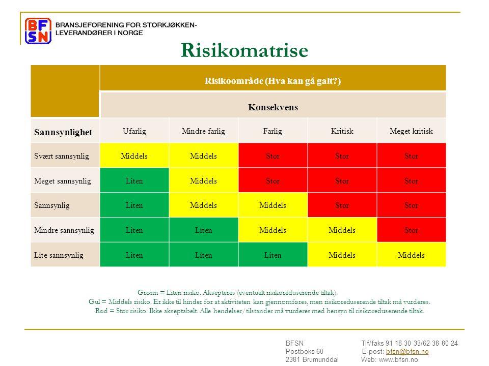 Risikoområde (Hva kan gå galt )