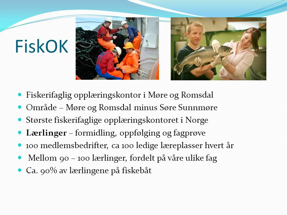 FiskOK Fiskerifaglig opplæringskontor i Møre og Romsdal