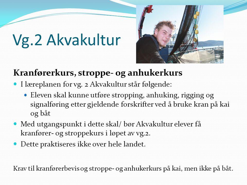 Vg.2 Akvakultur Kranførerkurs, stroppe- og anhukerkurs