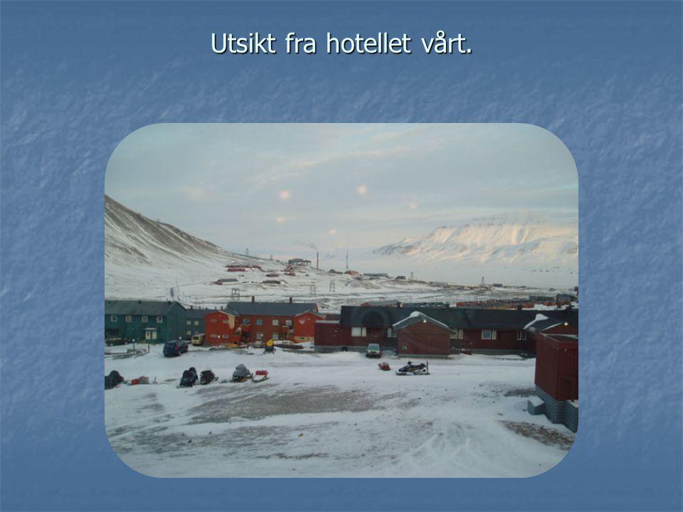 Utsikt fra hotellet vårt.