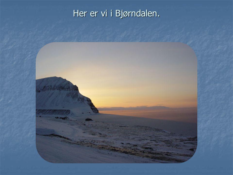 Her er vi i Bjørndalen.