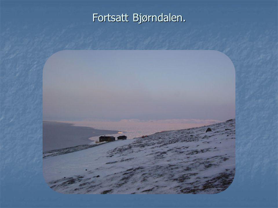 Fortsatt Bjørndalen.
