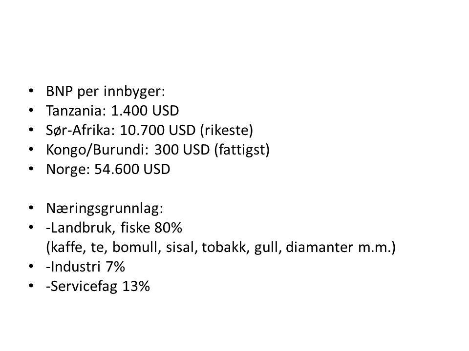 BNP per innbyger: Tanzania: 1.400 USD. Sør-Afrika: 10.700 USD (rikeste) Kongo/Burundi: 300 USD (fattigst)