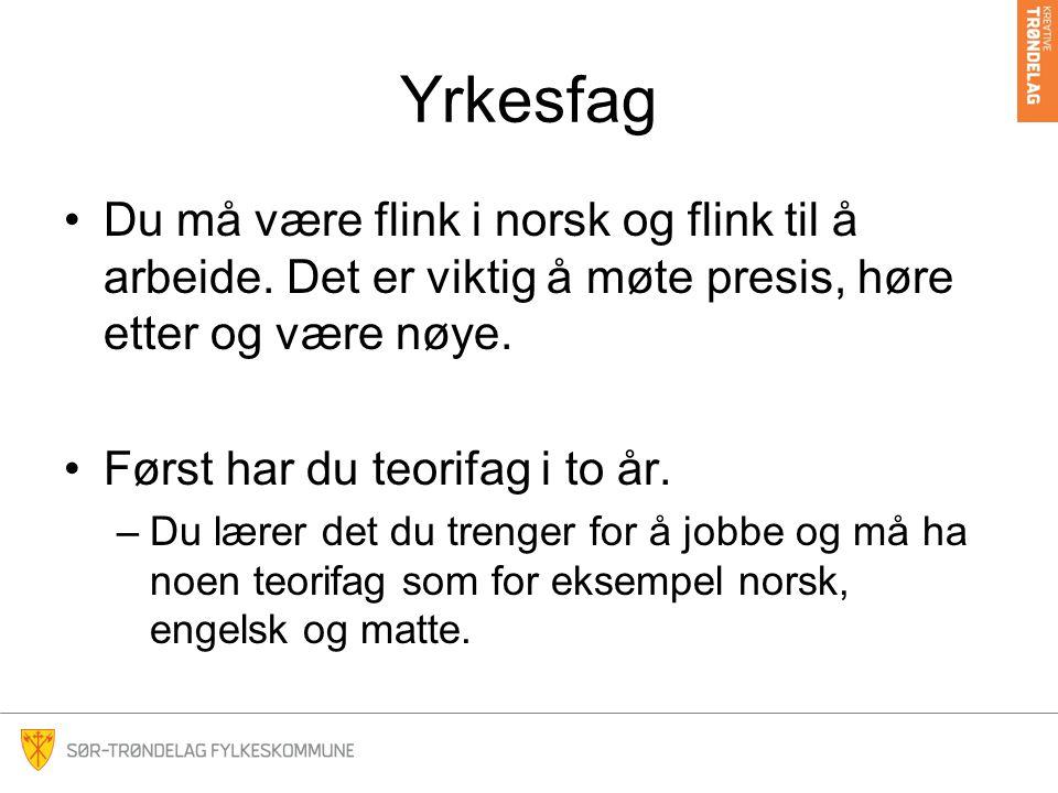 Yrkesfag Du må være flink i norsk og flink til å arbeide. Det er viktig å møte presis, høre etter og være nøye.