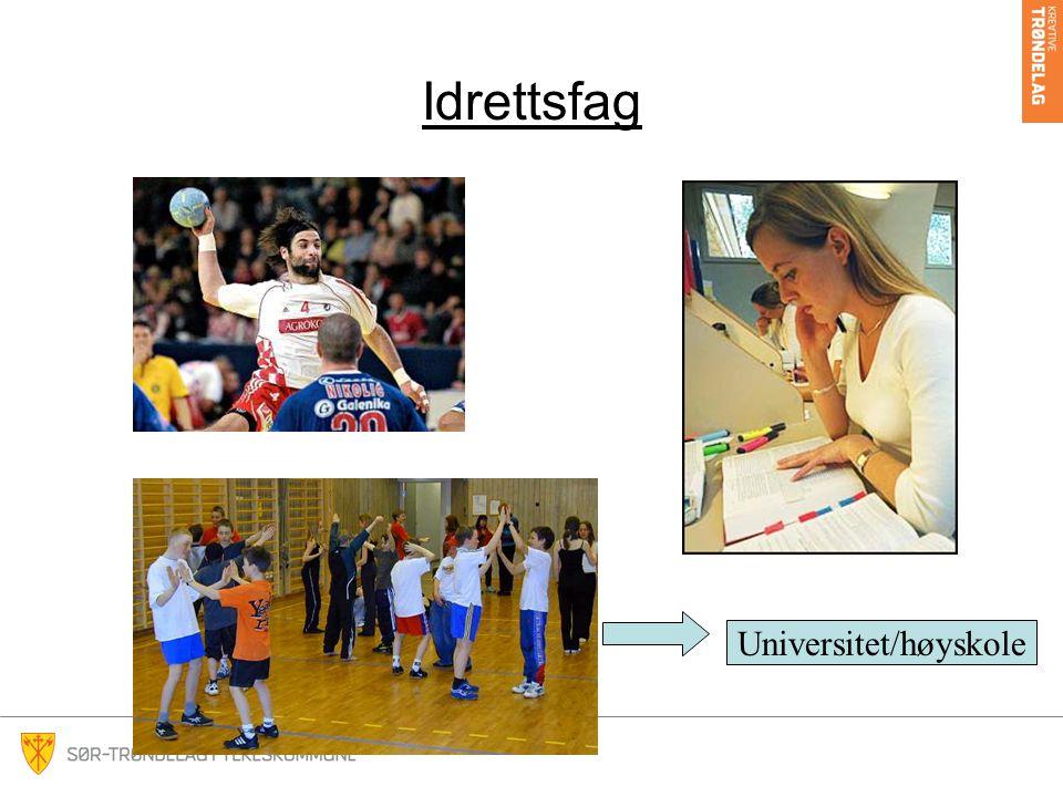 Idrettsfag Universitet/høyskole