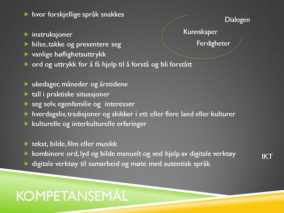 Kompetansemål hvor forskjellige språk snakkes instruksjoner