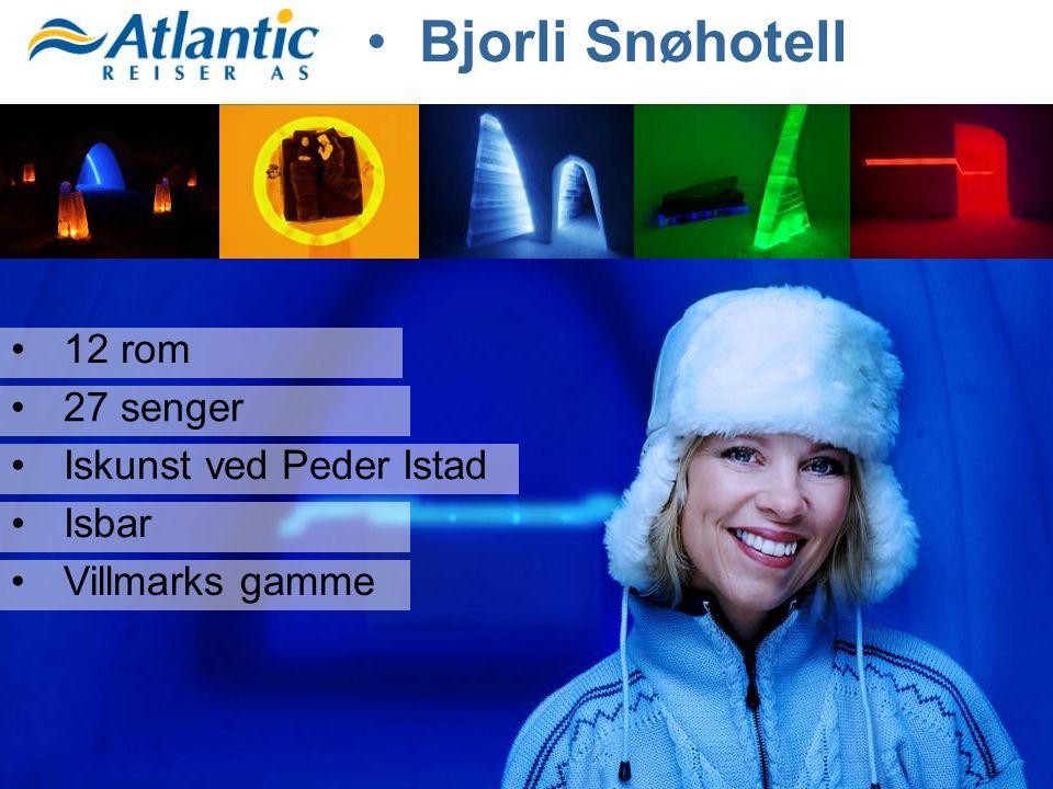 Bjorli Snøhotell 12 rom 27 senger Iskunst ved Peder Istad Isbar