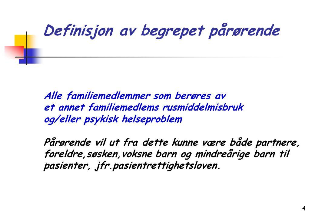Definisjon av begrepet pårørende