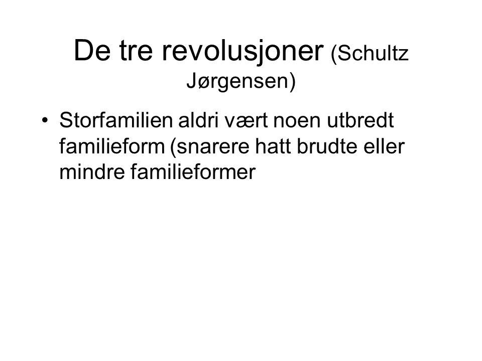 De tre revolusjoner (Schultz Jørgensen)