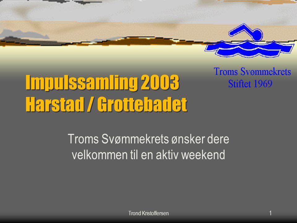 Impulssamling 2003 Harstad / Grottebadet