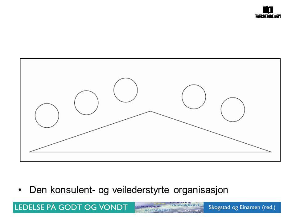 Den konsulent- og veilederstyrte organisasjon