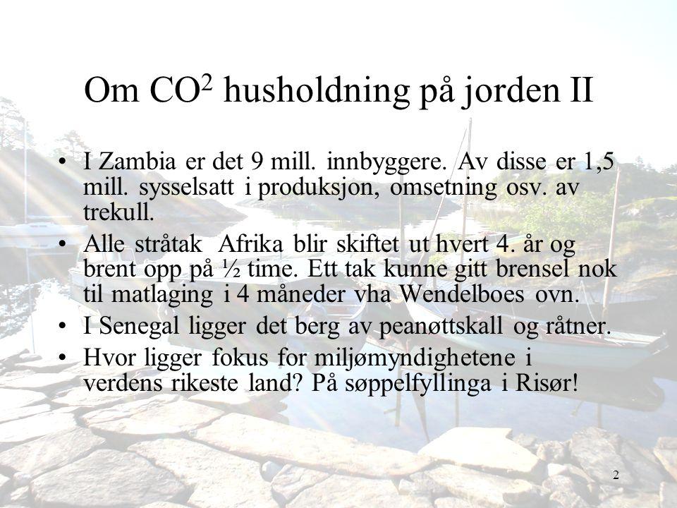 Om CO2 husholdning på jorden II