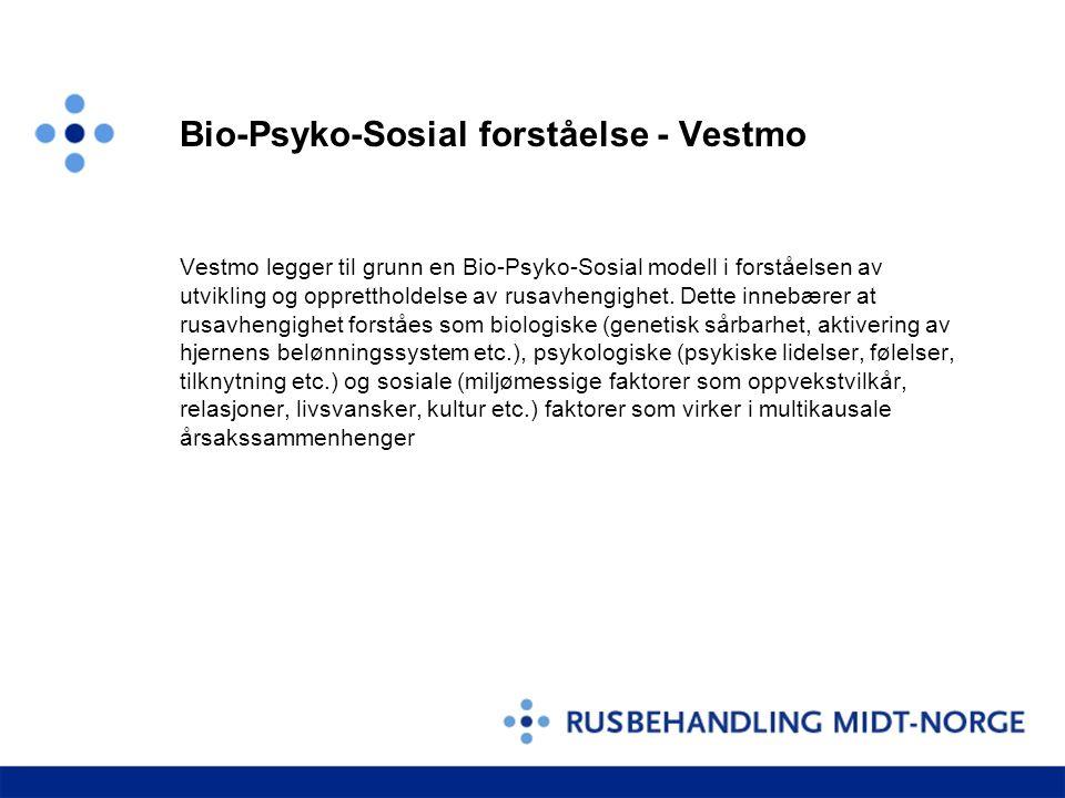 Bio-Psyko-Sosial forståelse - Vestmo