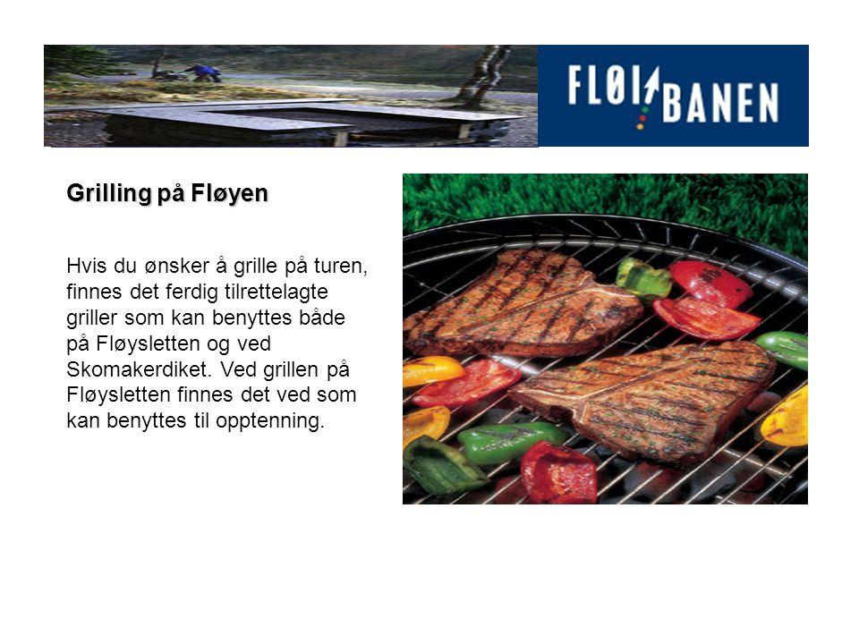 Grilling på Fløyen