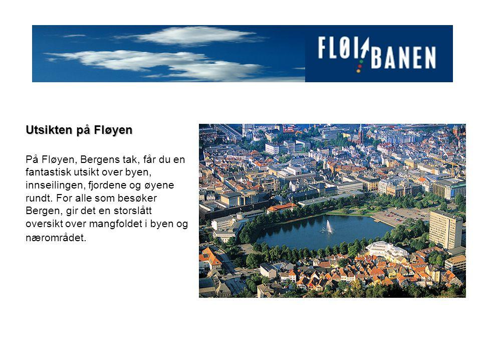 Utsikten på Fløyen