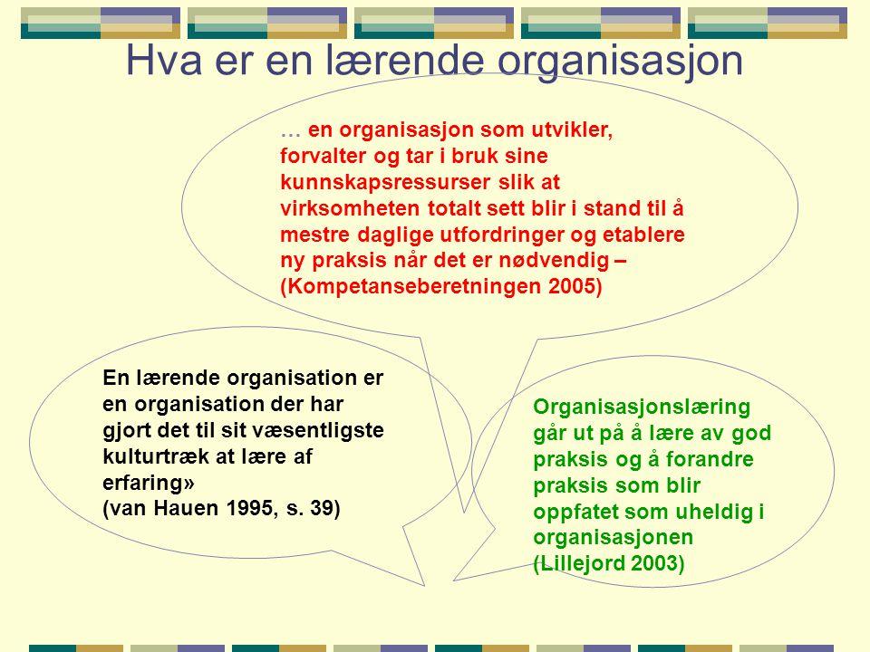 Hva er en lærende organisasjon