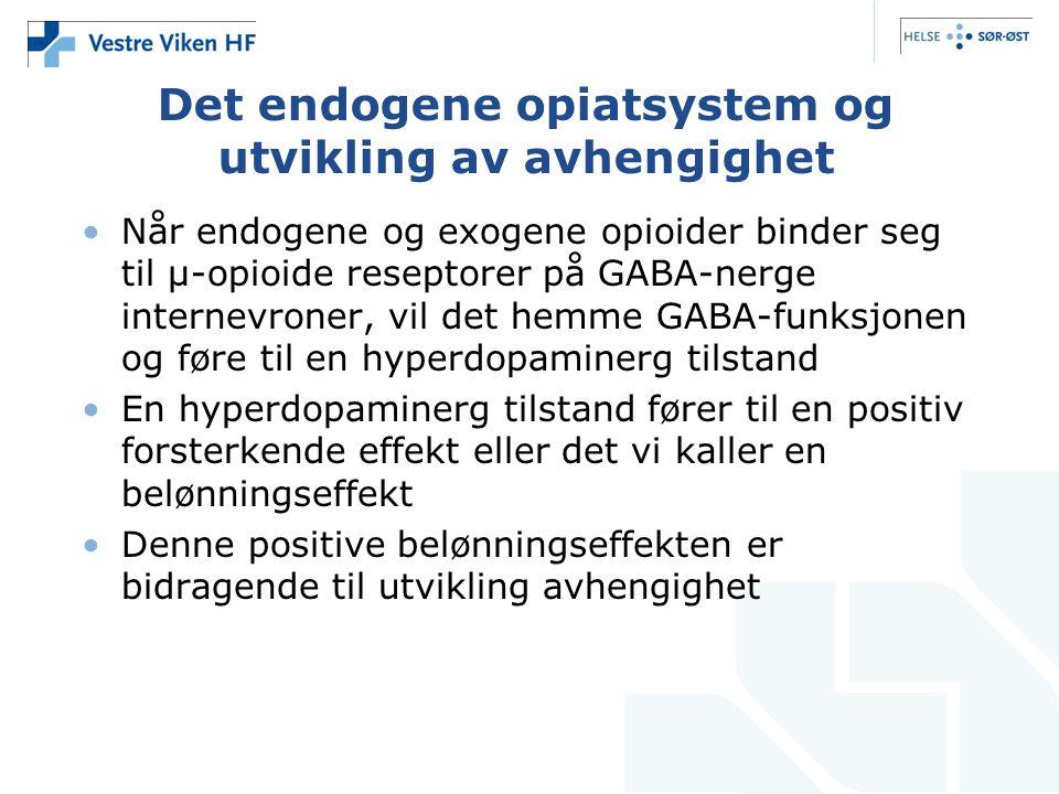 Det endogene opiatsystem og utvikling av avhengighet