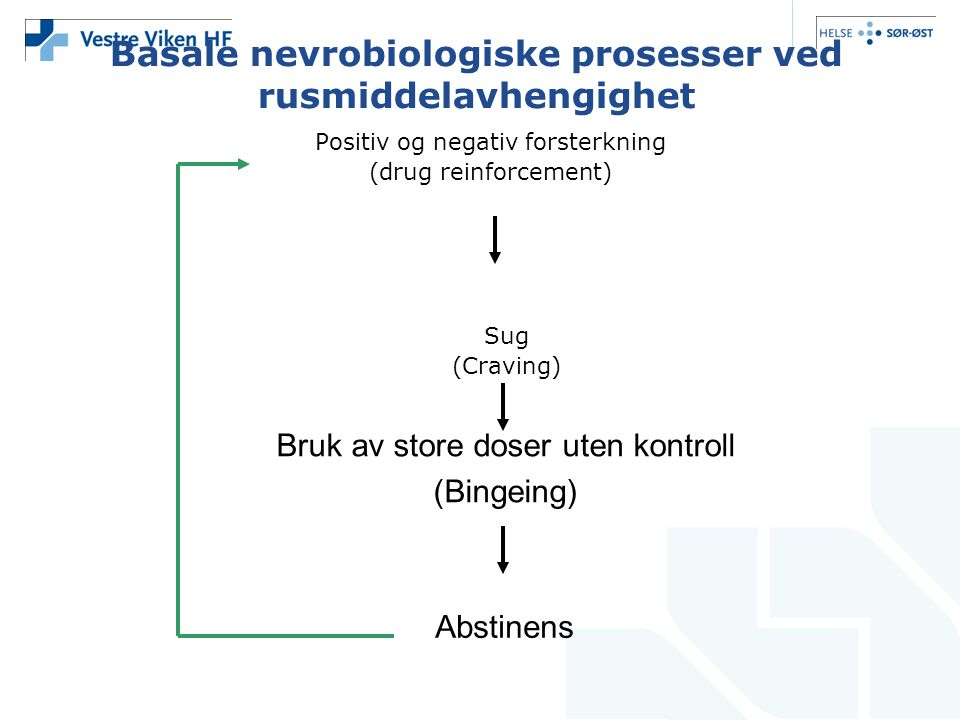 Basale nevrobiologiske prosesser ved rusmiddelavhengighet