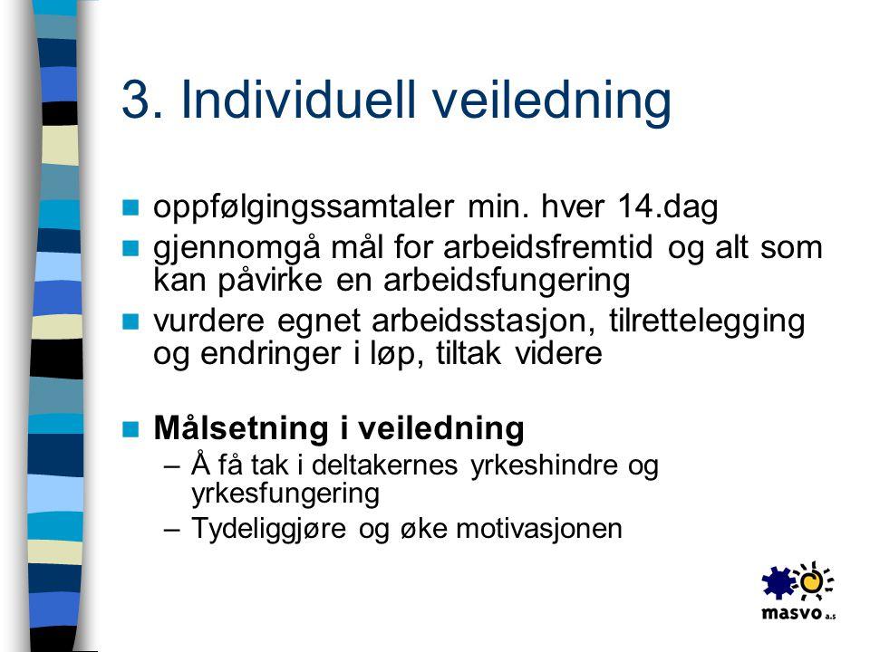 3. Individuell veiledning
