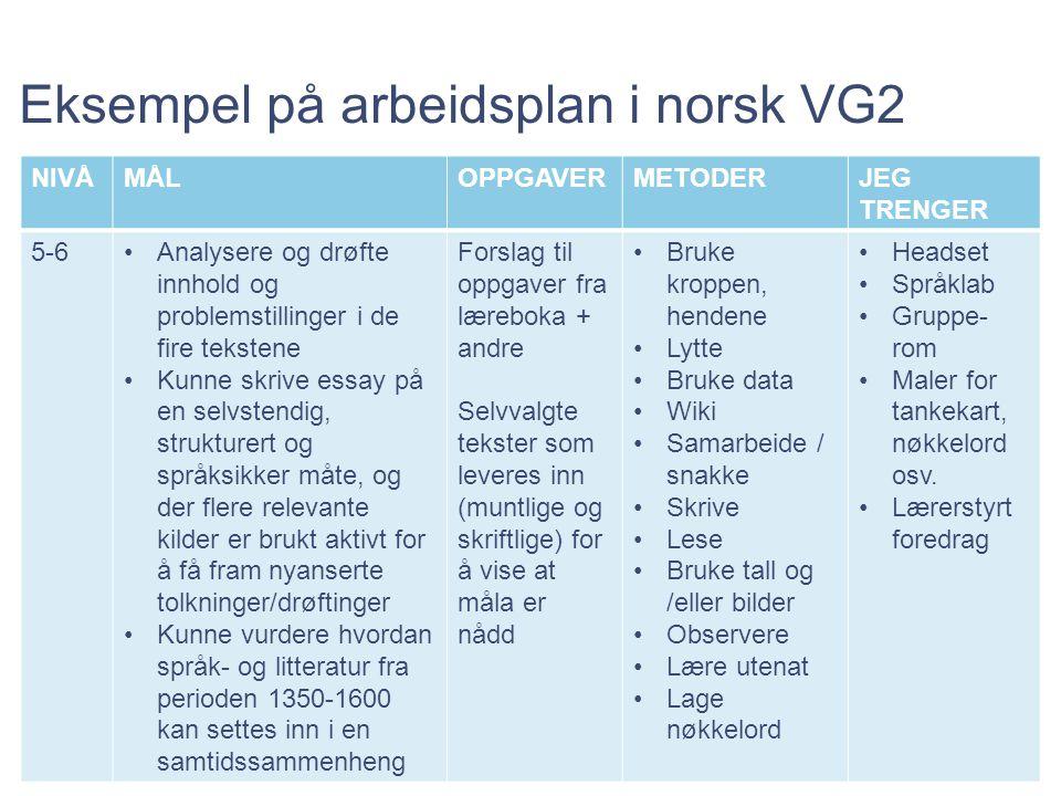 Eksempel på arbeidsplan i norsk VG2