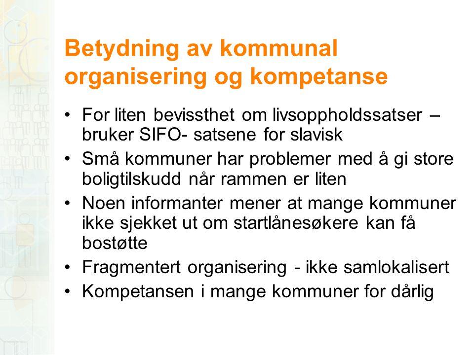 Betydning av kommunal organisering og kompetanse