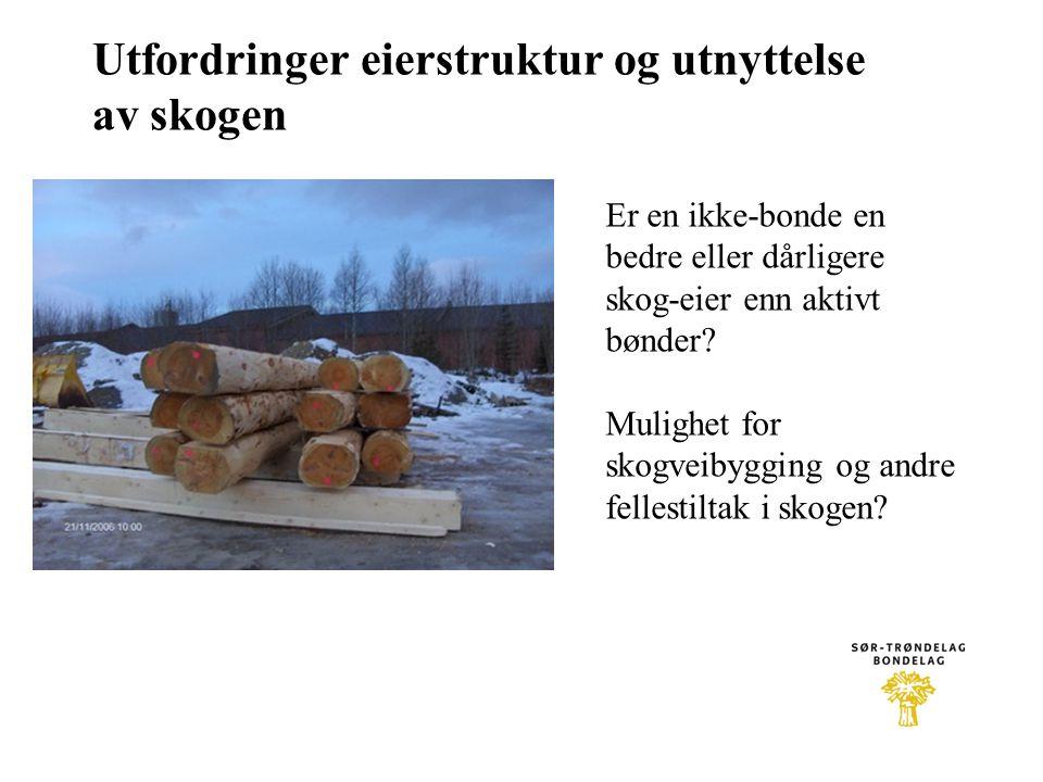 Utfordringer eierstruktur og utnyttelse av skogen