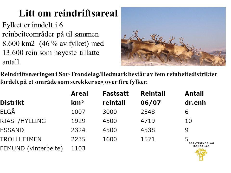 Litt om reindriftsareal