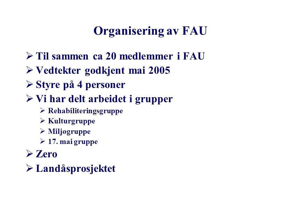 Organisering av FAU Til sammen ca 20 medlemmer i FAU