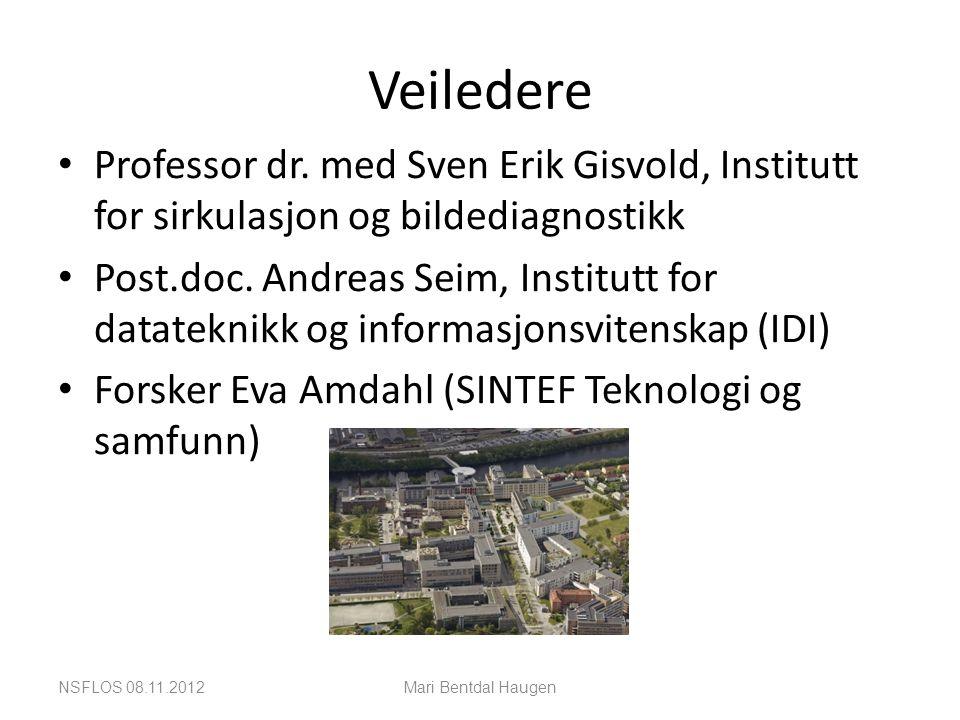 Veiledere Professor dr. med Sven Erik Gisvold, Institutt for sirkulasjon og bildediagnostikk.