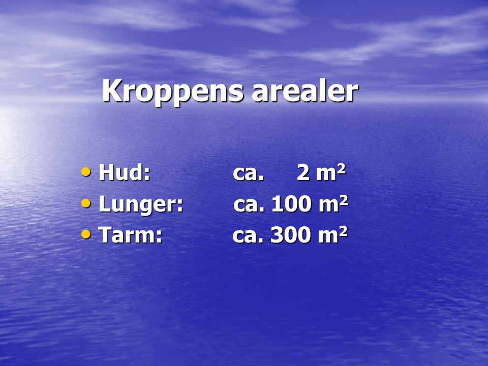 Kroppens arealer Hud: ca. 2 m2 Lunger: ca. 100 m2 Tarm: ca. 300 m2