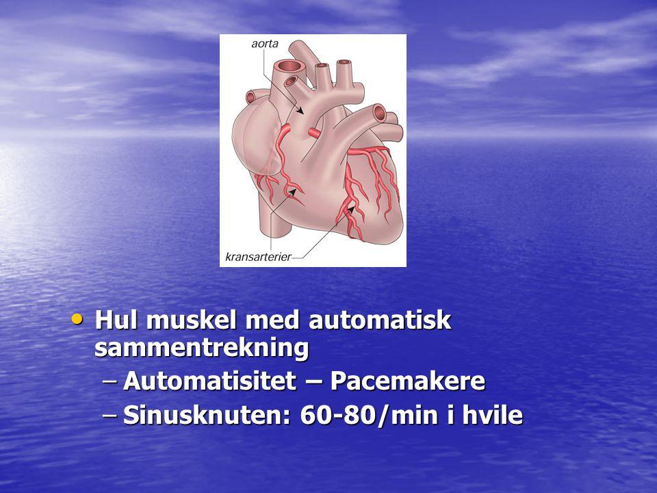 Hul muskel med automatisk sammentrekning