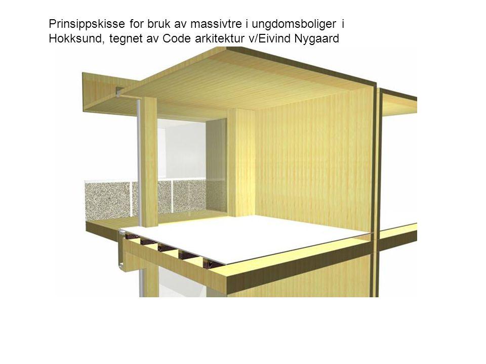 Prinsippskisse for bruk av massivtre i ungdomsboliger i Hokksund, tegnet av Code arkitektur v/Eivind Nygaard