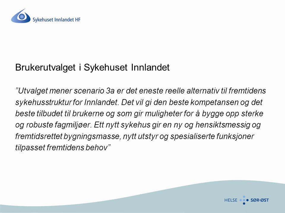 Brukerutvalget i Sykehuset Innlandet