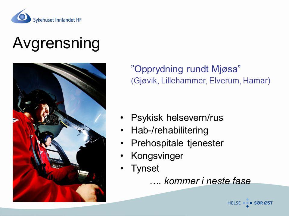 Avgrensning Opprydning rundt Mjøsa Psykisk helsevern/rus